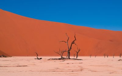 Namibia in a Nutshell